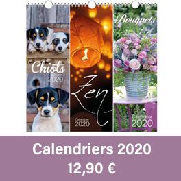 Calendriers 2020 de différents styles (chevaux, chiots, fleurs).