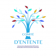 Visuel pour Ressources des personnes en situation de handicap : le Comité d'Entente interpelle les parlementaires