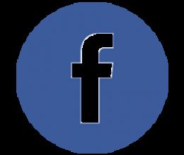Lien vers https://www.facebook.com/associationdesparalysesdefrance/
