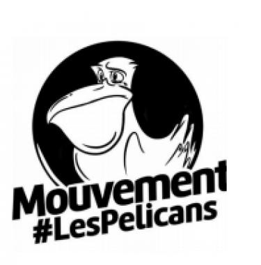logo pelicans